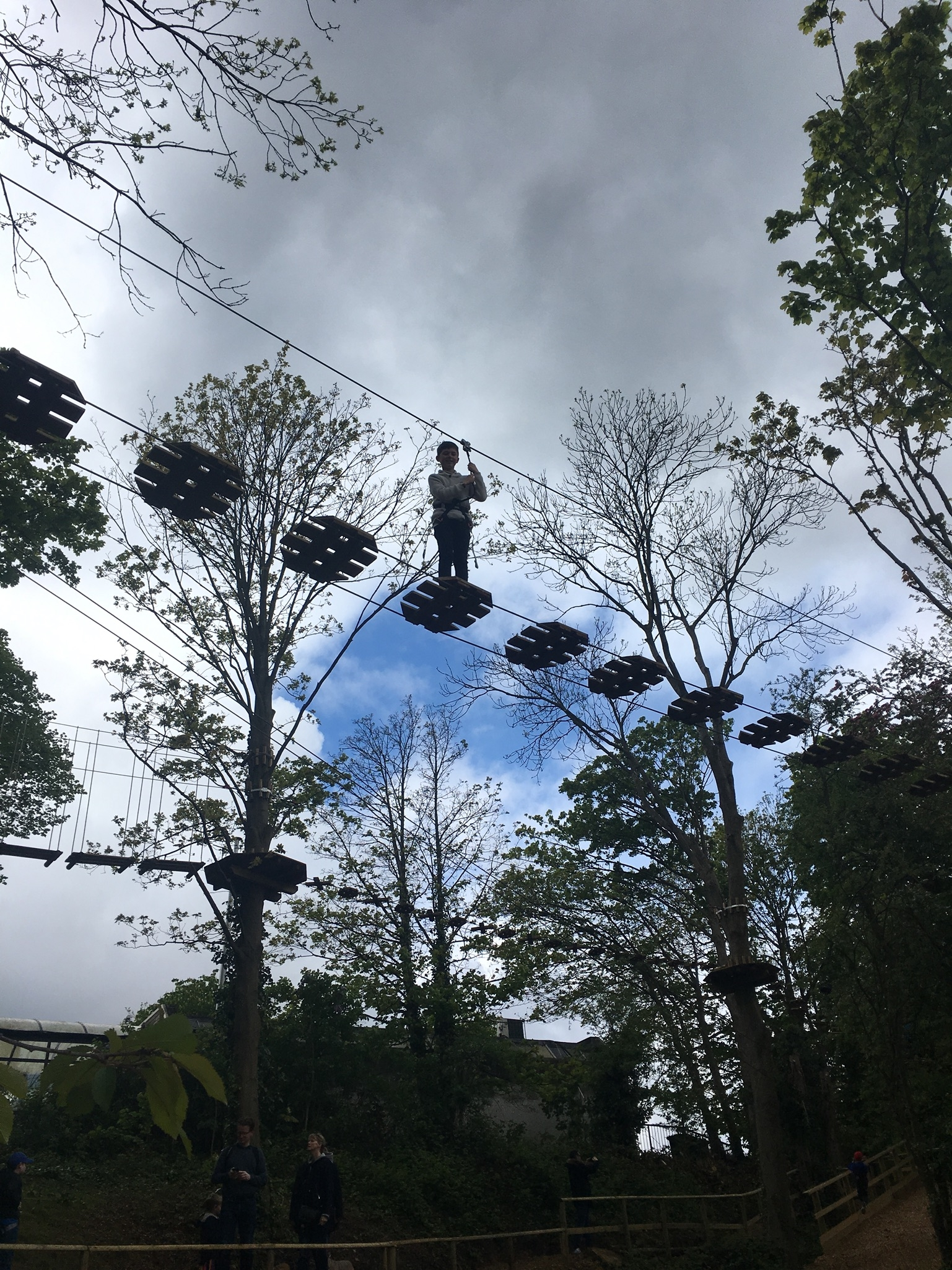 Go Ape Junior tree top adventure