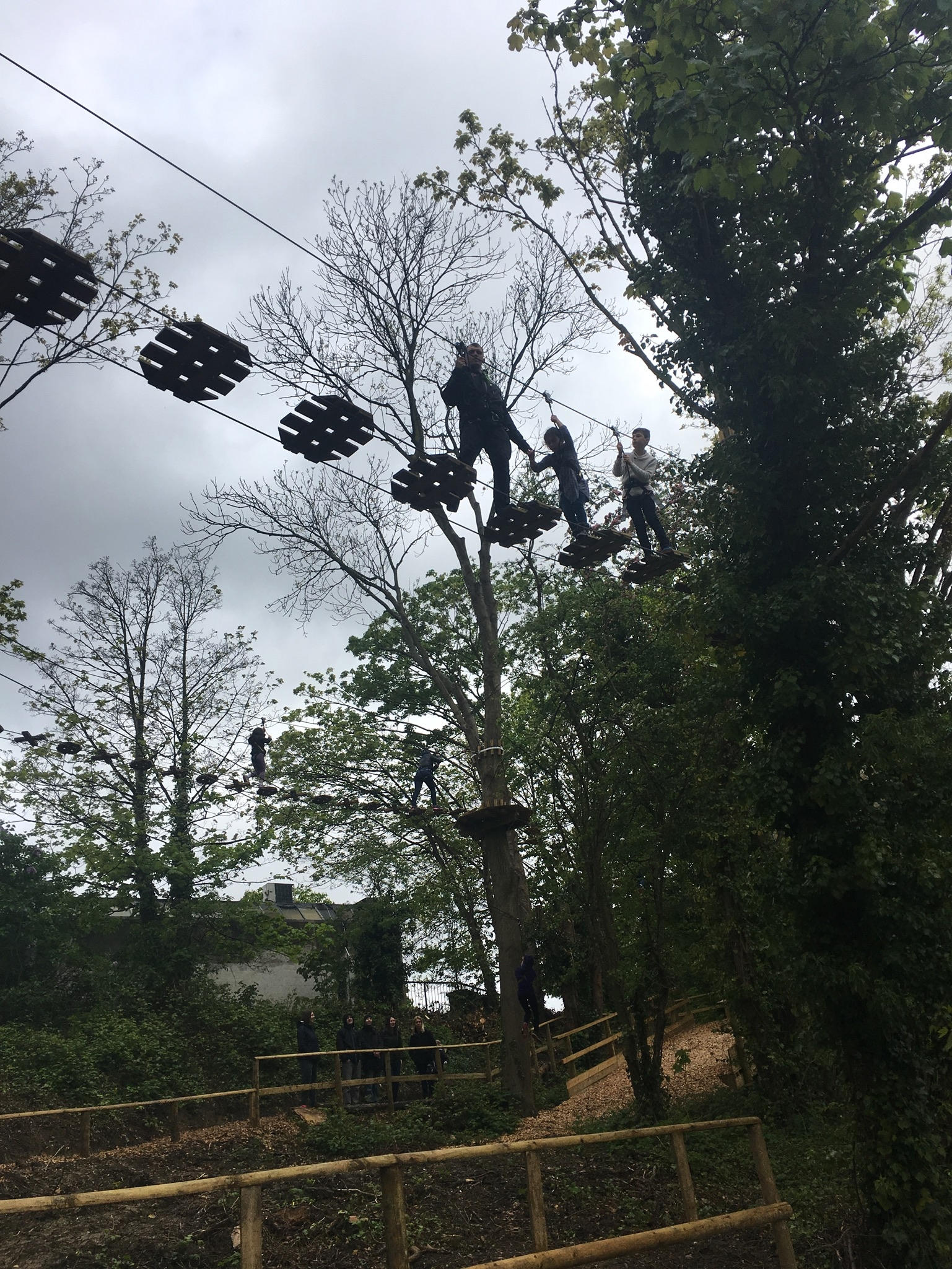 Go Ape instructors